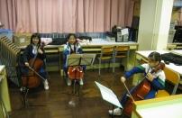 大提琴A班